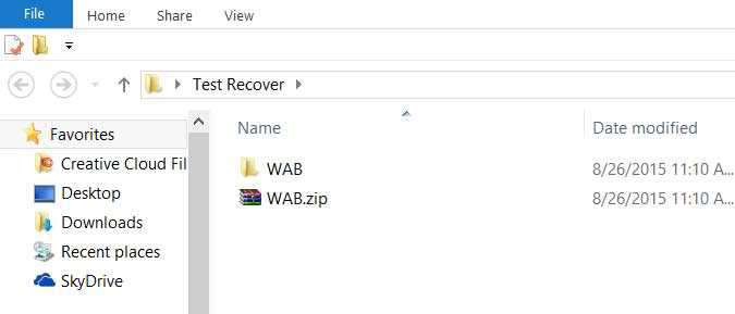 The Recovered Files