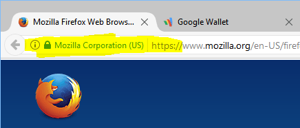 HTTPS with company or organization name