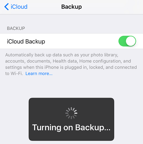 Turns on iCloud backup