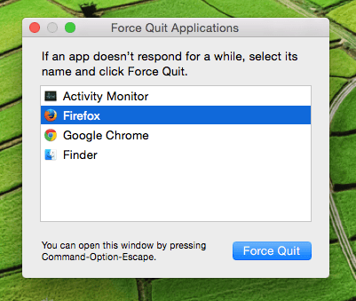 Force Quit Mac Application