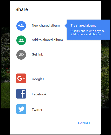 Share an image on Google Photos